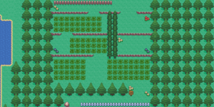 Route 1.png
